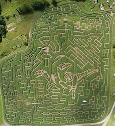 the world s most incredible mazes include hedgerows shaped