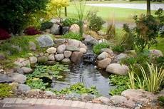 garden pond guide aquatics world