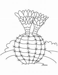 Cactus Plant Coloring Pages Small Cactus Plants Coloring Page Free Small