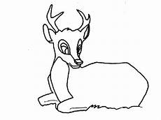 Deere Malvorlagen Review Deer Coloring Pages