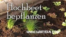 hochbeet richtig bepflanzen hochbeet bauen und bepflanzen teil 2