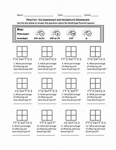 punnett square practice codominance and incomplete