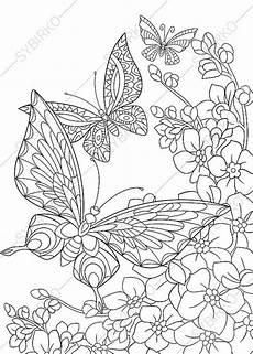 butterfly and flowers 3 coloring pages animal