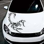 Hood Car Scorpion Dangerous Predators Symbol Animals Decor