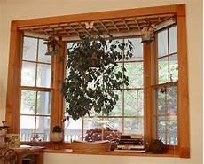 Kitchen Bay Window Plants by File Zxaylis Bay Window Accessory Designed For Hanging
