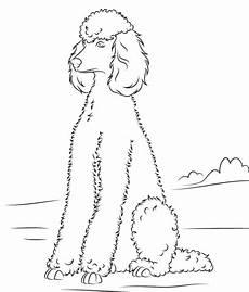 Ausmalbilder Hunde Pudel Ausmalbild Pudel Ausmalbilder Kostenlos Zum Ausdrucken
