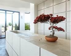 arbre d interieur design bonsai trees living room ideas 4 homes