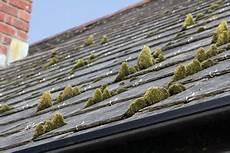 mousse sur le toit nettoyer sa toiture avec un produit anti mousse bricolea