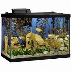 bundle save tetra 20 gallon complete glass aquarium tank kit with filter heater led light