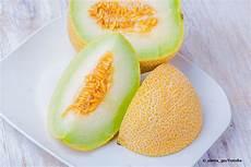 melonen anbauen so gelingt es zuckermelonen selber ziehen