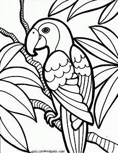 parrot coloring pages cinderella bird coloring pages