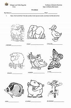 animal worksheets to colour 14048 animals colours and adjectives