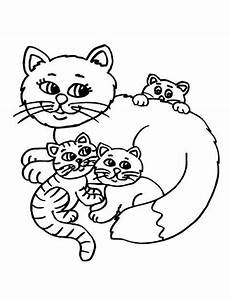 cat coloring pages at getcolorings free