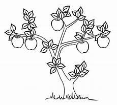 Mewarnai Gambar Pohon Apel Contoh Gambar Mewarnai
