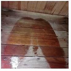 sauna meme