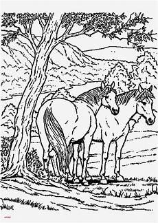 Ausmalbild Pferde Bauernhof Kostenlose Ausmalbilder Pferde Bilder Zum Ausmalen