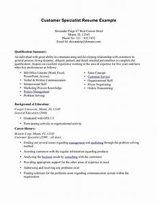 professional summary resume exles customer service resume summary exles customer