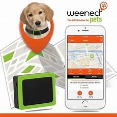 balise gps pour chiens weenect pets avec carte sim