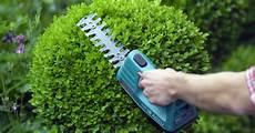 Buchsbaum Schneiden Mein Sch 246 Ner Garten