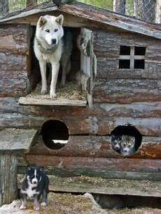 husky dog house plans new husky dog house plans new home plans design