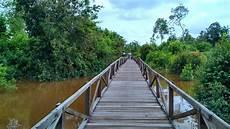 Di Hutan Pendidikan Seluas Ribuan Hektar Ini Mahasiswa