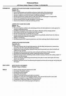 10 salesman objectives resume exles business letter