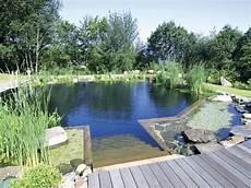 home www naturpool pool de