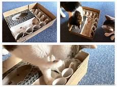 katzenspielzeug selber basteln katzen spiel selber machen cat and