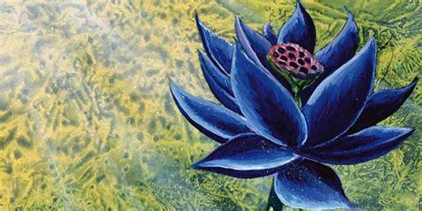 Black Lotus Original Art