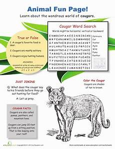 fun with cougars worksheet education com