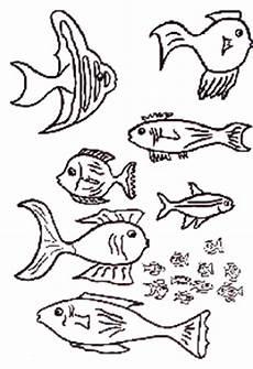 malvorlagen fische vorlagen ausmalbilder