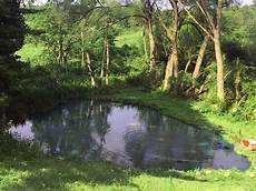 large pond maintenance assessments and installations
