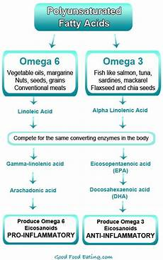 omega 3 vs omega 6 fatty acids