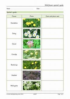 science plants ks1 worksheets 13580 eyfs ks1 ks2 plants teachit primary