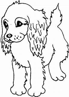 cocker spaniel drawing at getdrawings free