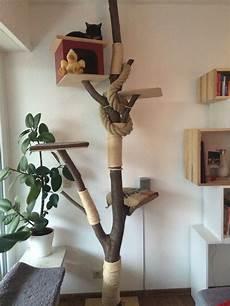 kratzbaum mit liebe selbst gemacht kratzbaum