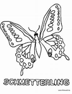 Malvorlage Raupe Schmetterling Raupe Nimmersatt Ausmalbild Kinder Ausmalbilder