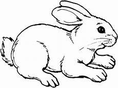 Ausmalbild Hase Comic Konabeun Zum Ausdrucken Ausmalbilder Hasen 18238