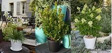 agr 233 menter sa terrasse ou balcon avec des plantes en pot