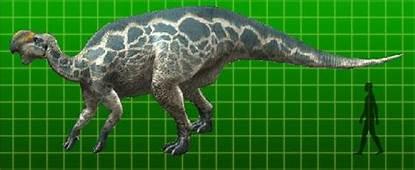 Rei De Dinossauro Altirhinus