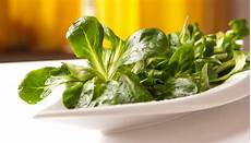 feldsalat anbauen tipps rund um den ackersalat kochjunkies