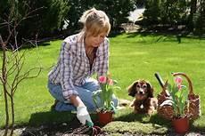 Arbeiten Im Garten - diy landscaping sprout landscape garden design