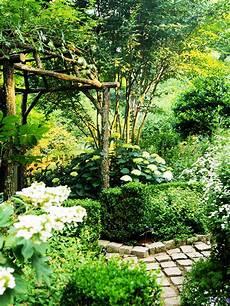 your garden transform your garden in a green paradise now