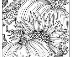 sunflower coloring pages for adults at getcolorings