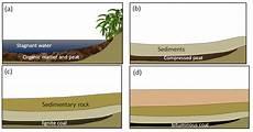 9 3 organic sedimentary rocks physical geology first