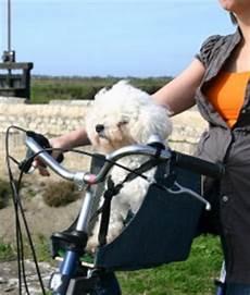 comment fabriquer une re pour chien neaud morin location velo ile de re porte chien kite
