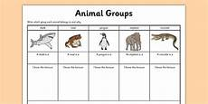 animal kingdom worksheets for kindergarten 14201 animal worksheet science resource twinkl