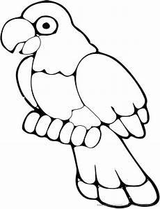 Ausmalbilder Tiere Papagei Papagei Bilder Zum Ausmalen Ausmalbild Club