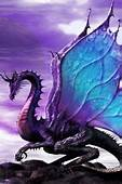 1000  Images About Beautiful Dragon 1 On Pinterest