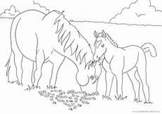 Malvorlagen Pferde Zum Ausdrucken Text Als Siebtes Ausmalbild Mit Pferden Ein Pferd Mit Fohlen